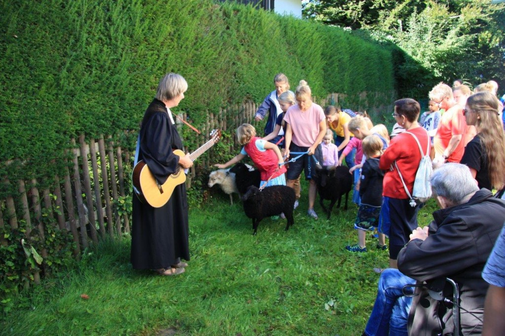 Schafsgeschichten mit Gitarrenbegleitung